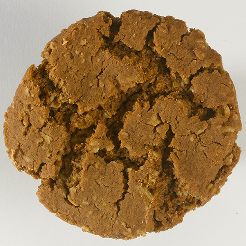 chocolate oranger ginger biscuit